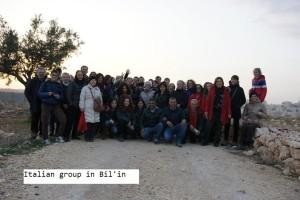 gruppo di bil'in