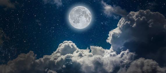 """""""La luna in gabbia"""", il nuovo romanzo di Maria Sardella"""
