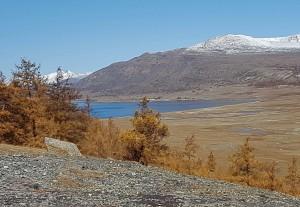 Magico Altai